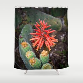 Cactus-Wrapped Flaming Firecraker Flower Shower Curtain