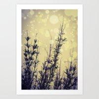 fireflies Art Prints featuring Fireflies by Kanelov