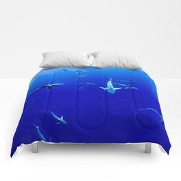 Sharks! Comforters