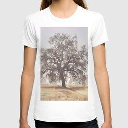 Hazy Tree T-shirt