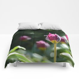 Sprouting Beauty Comforters