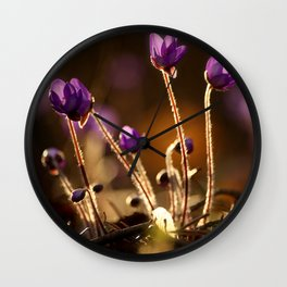 Hepaticas in The Glare Of The Sun #decor #society6 Wall Clock