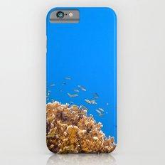 School iPhone 6s Slim Case