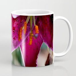 A wet Asiatic Lily Coffee Mug