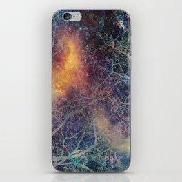 α Regulus iPhone Skin