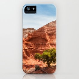 Kodachrome Park colorful desert beauty in spring. iPhone Case