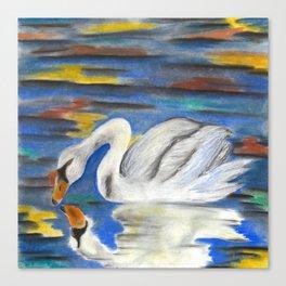 Stop Looking at Me Swan Canvas Print