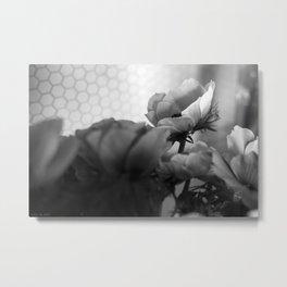 black+white anemones #2 Metal Print