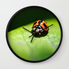A ray of hope.  Wall Clock