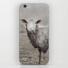 The Sheep iPhone & iPod Skin