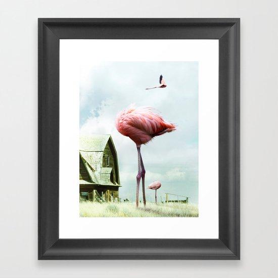 Headless Flamingos Framed Art Print