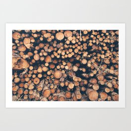 Brecon Wood Art Print