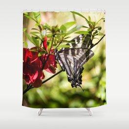 Butterfly on an Azalea Shower Curtain