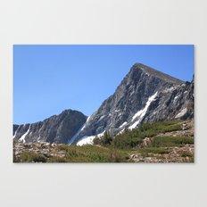 Mount Dana Canvas Print