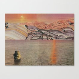 The See Canvas Print