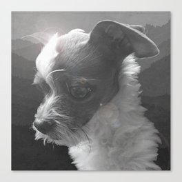 LiAM (billy d. goat) Canvas Print