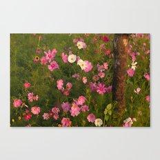 Pinks & Tree  Canvas Print