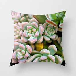 Dewy Delights Throw Pillow