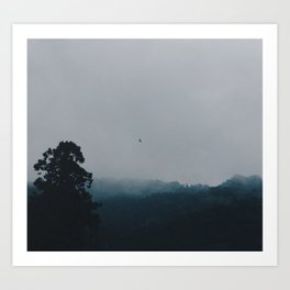 In the mists of mountains Art Print