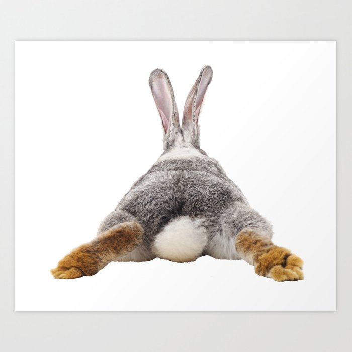 Cute Bunny Rabbit Tail Butt Image Easter Animal Art Print By