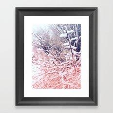 Pink Snow Framed Art Print