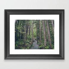 A walk through the trees Framed Art Print