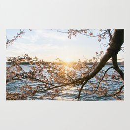 Sun Over the Horizon Rug
