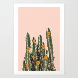 Cactus & Flowers Art Print
