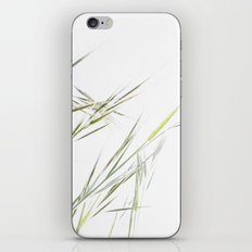 .. iPhone & iPod Skin