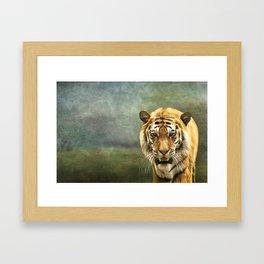 Drawing bengal tiger portrait Framed Art Print
