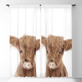 Baby Highland Cow Portrait Blackout Curtain