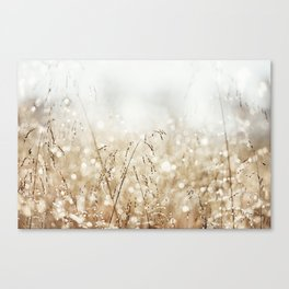 Dewdrop Nature Photography, Neutral Dew Drop, Gold White Brown Beige, Cream Water Drops Canvas Print