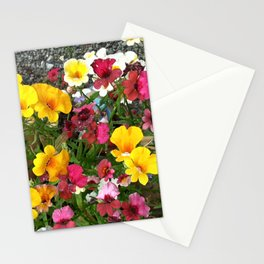 Colorful Nemesia Stationery Cards