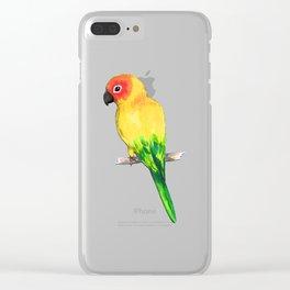 Sun conure Clear iPhone Case