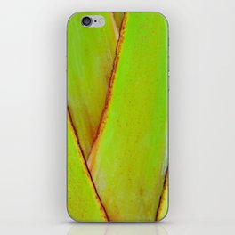 Organic travellers palm tree pattern iPhone Skin