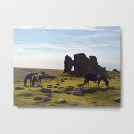 DARTMOOR PONIES AT RUINS OF FOGGINTOR QUARRY Metal Print