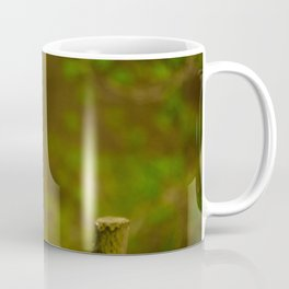 Cute Squirrel (Color) Coffee Mug