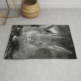 Animal Bunny Cute Ears Easter Rug