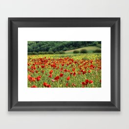 Poppies, Poppies, Poppies Framed Art Print