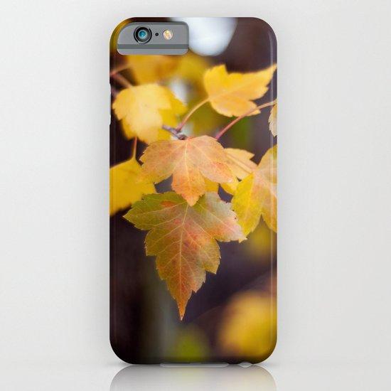 Autumn Yellow iPhone & iPod Case