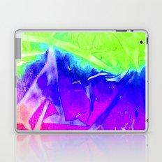 Aurora 3 - Green Sky Laptop & iPad Skin