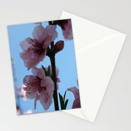 Pastel Pink of Peach Tree Blossom Stationery Cards