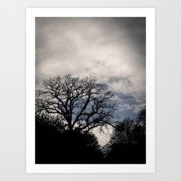 Breaking Through the Storm Art Print