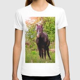 Dark bay horse T-shirt