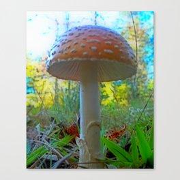 Storybook Shroom Canvas Print