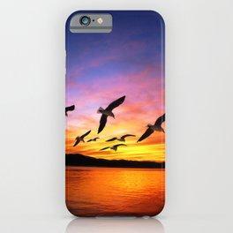 Seagull Sunset iPhone Case