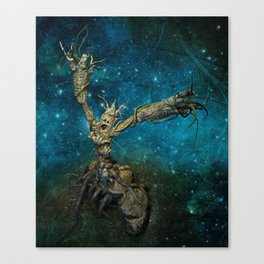 Last frontier Canvas Print