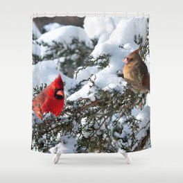 Snow for Breakfast (Cardinals) Shower Curtain