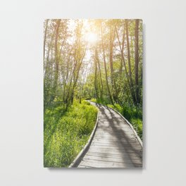 Path on stilts in French forest swamp by sunset Metal Print