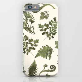Green Fern Medley iPhone Case